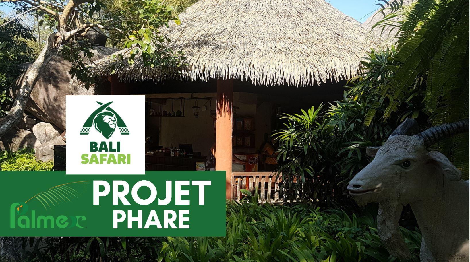 Projet Phare Palmex – Bali Safari