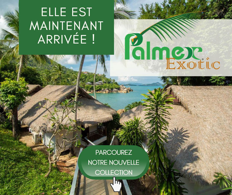 Palmex Exotic